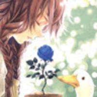 Imagem de perfil: Luna Uliana