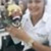 Imagem de perfil: Fernanda Rocha